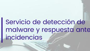 malware, servicio malware, seguridad informatica